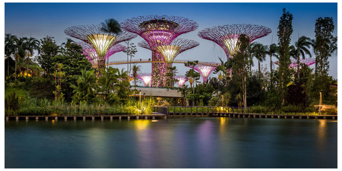 Garden by the bay 1